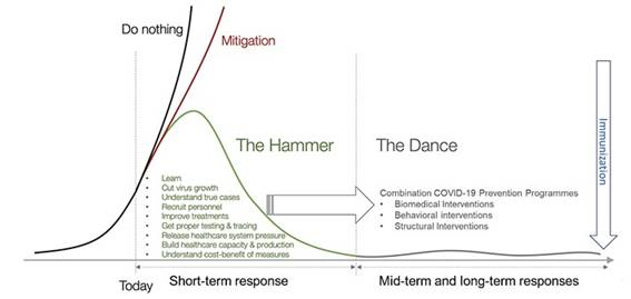 """The Hammer and The Dance"": phases to face COVID-19 pandemic. Adapted from Pueyo T."
